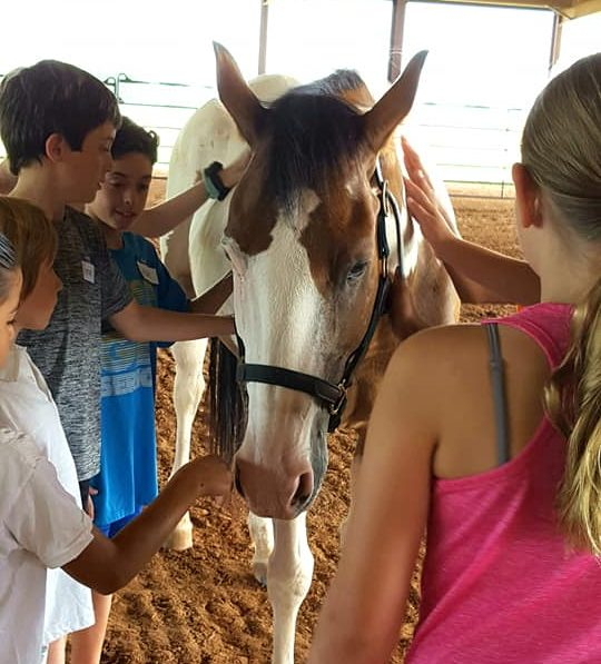 Spirit Song's Equine-Assisted Bible Camp (EABC)